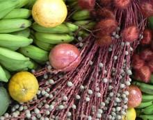 América Latina se consolida como el mayor exportador neto de alimentos