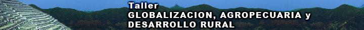 banner_taller_globalizacion09
