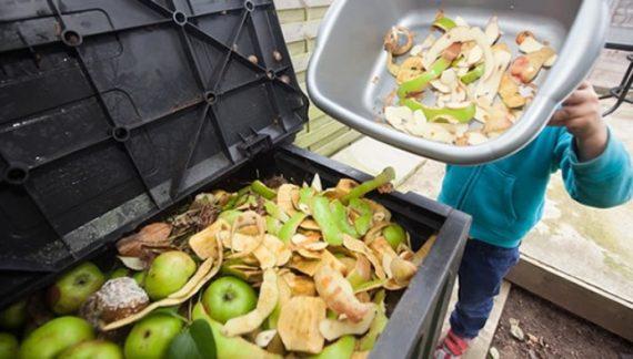 El mundo del desperdicio: De toda la comida producida a nivel mundial solo se consume el 66%El mundo del desperdicio: De toda la comida producida a nivel mundial solo se consume el 66%