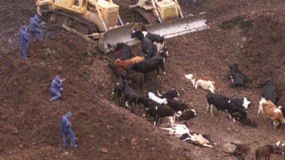 Estados Unidos: la familia Monster en la granja y los Adams en el gobierno