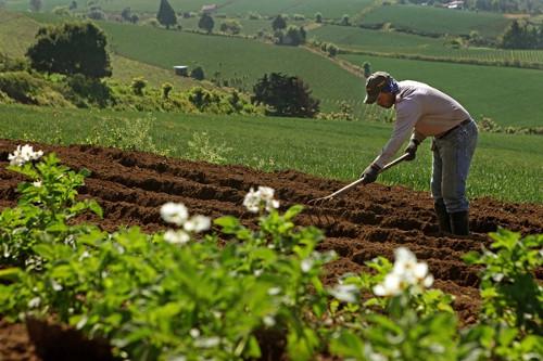 La nueva coyuntura de la agricultura sudamericana