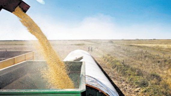 Argentina: el precio, las protestas ambientales y una pelea por regalías amenazan los sojadólares