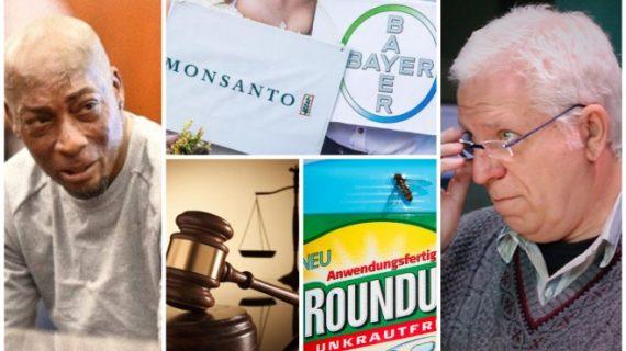 Monsanto y un fallo judicial histórico sobre los efectos del glifosato