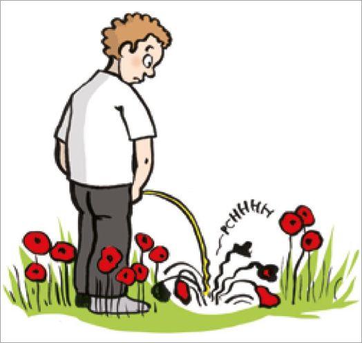 Agroquímicos hasta en la orina