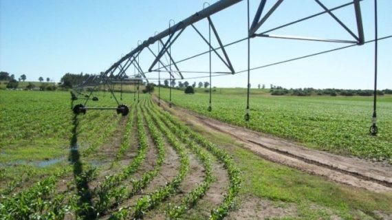 Reglamento del riego en Uruguay: una propuesta desprolija e inaceptable